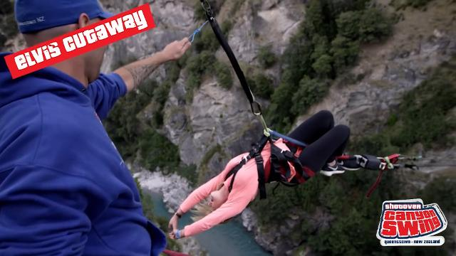 NZ claims world's highest swing
