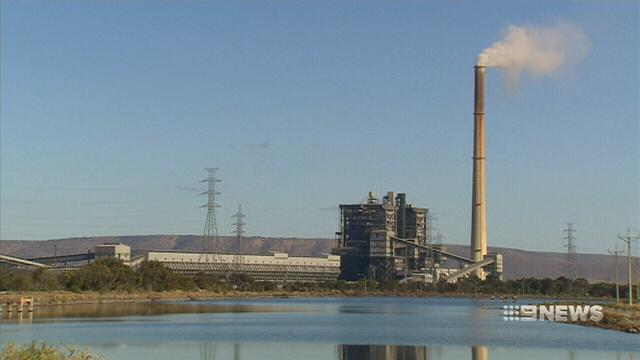 VIDEO: Probe into SA power blackouts