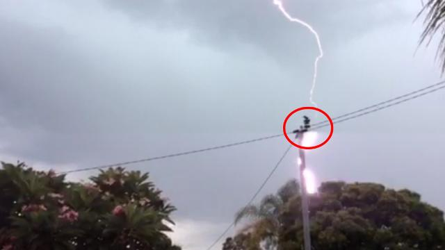 Perth residents come within metres of being hit by lightning during storm