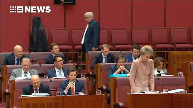Pauline Hanson enters Senate in burqa