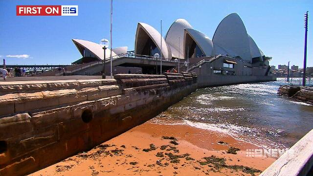 Artificial reef system to be trialled at Opera House