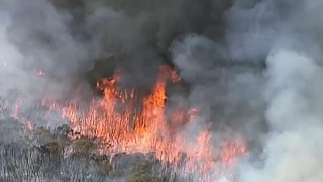 Bushfire burning near Sydney homes and school