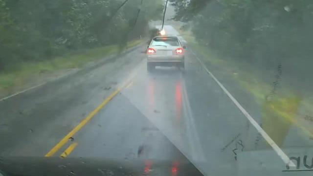 Pine tree falls on driver during Irma