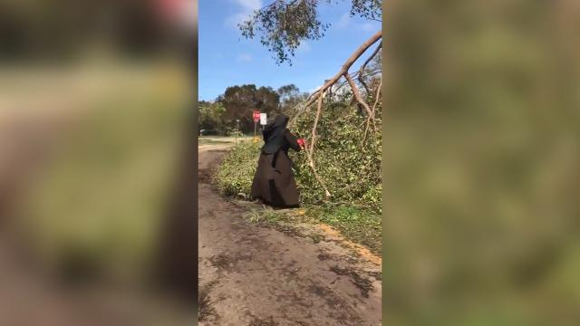 Chainsaw-wielding nun helps clean up South Florida community
