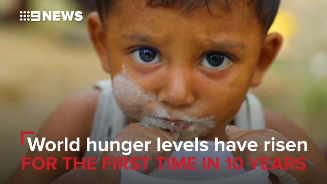 Global hunger rising driven by conflicts and climate change