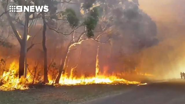 'Too late to leave' as out-of-control bushfire burns on NSW south coast