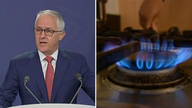 Malcolm Turnbull addresses looming gas shortfall